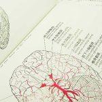 「デジタル回路」と「アナログ回路」|脳の認識回路で左右されるブランディング